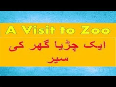 Visit to the zoo essay